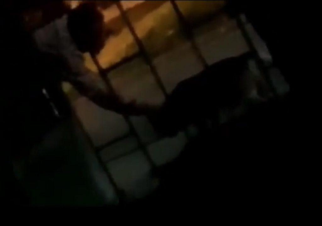 Denuncian a un presunto violador de perros en Palmira