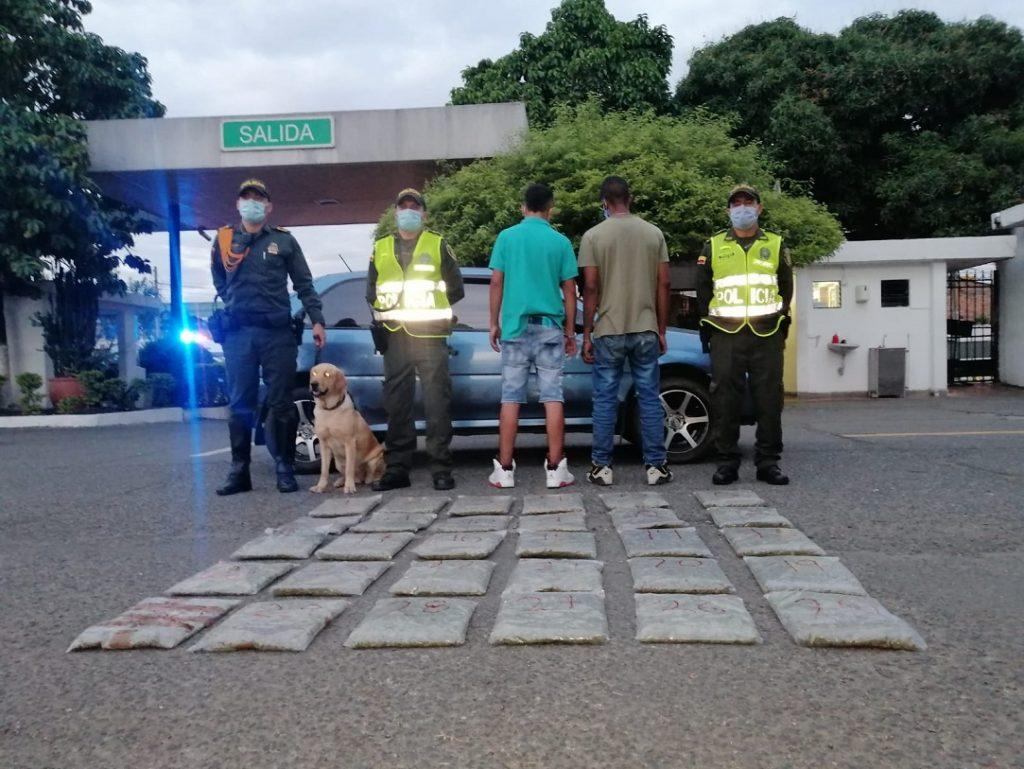 Cayeron con 30 bolsas de marihuana en el barrio Piloto